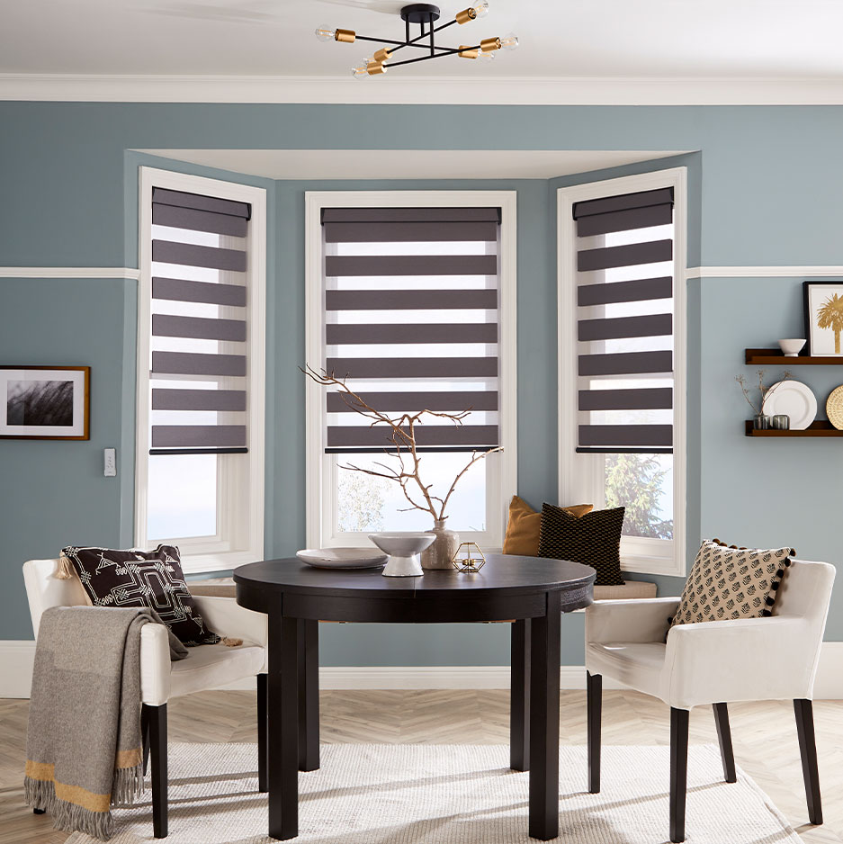 Discover Vision blinds