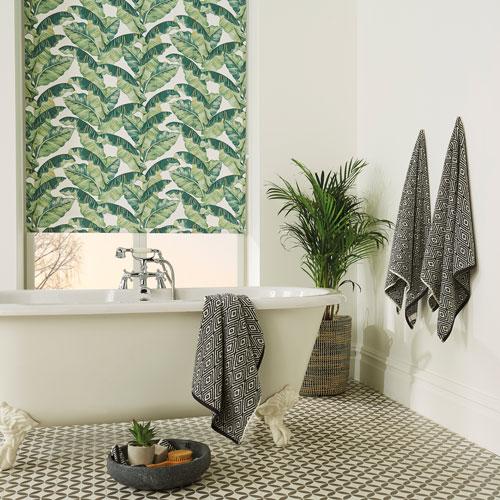 Palm Leaf Roller