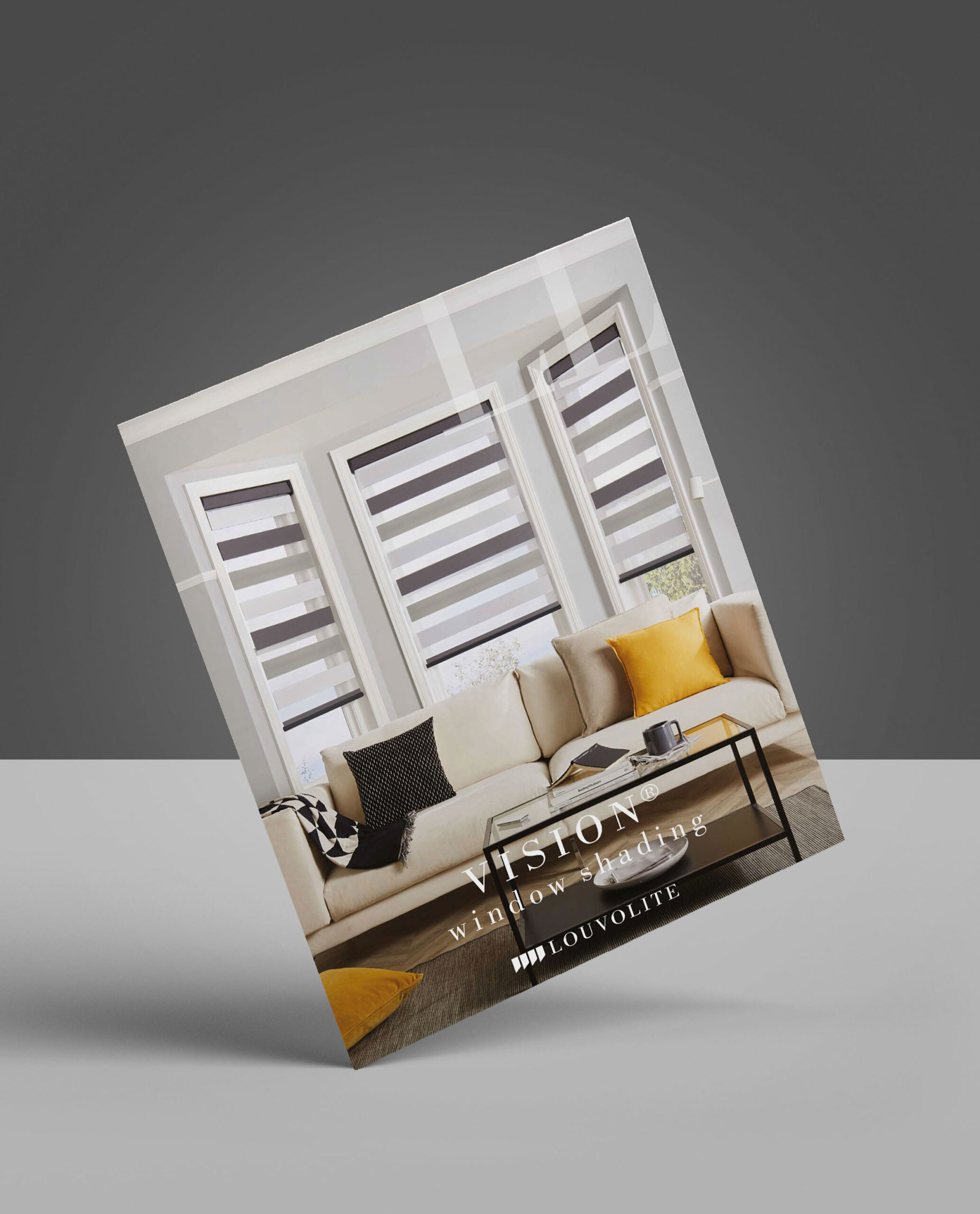 Vision_Brochure_Cover